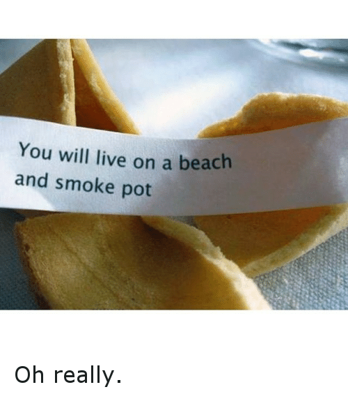 Funny, Smoking, and Beach: You will live on a beach  and smoke pot Oh really.