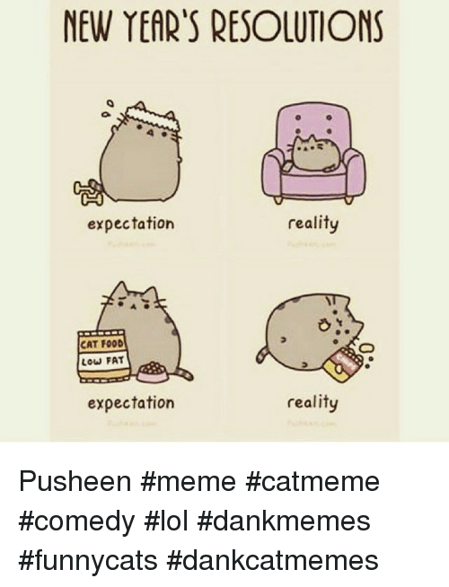 Instagram Pusheen meme catmeme comedy lol dankmemes f2063b new year's resolutions reality expectation cat food low fat
