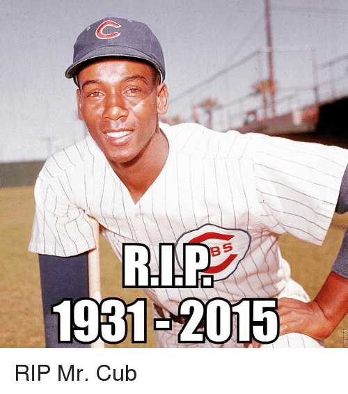 Mlb, Cubs, and  Rips: RIP  BS  1931-2015  ROFLBOT RIP Mr. Cub