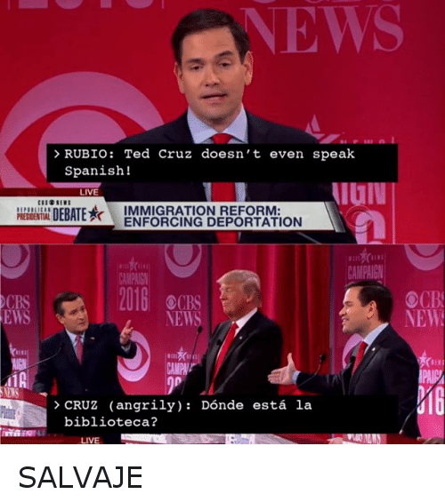 Donald Trump, Presidential Election, and Spanish: RUBIO: Ted Cruz doesn't even speak Spanish  CRUZ (angrily) : Dónde está la biblioteca?  SALVAJE SALVAJE