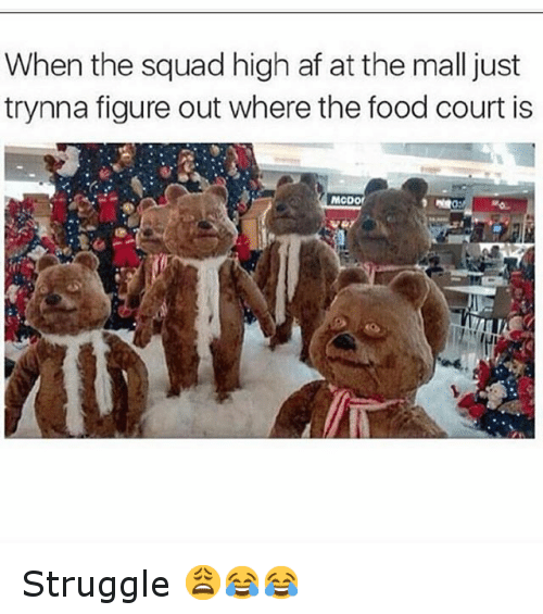 Af, Food, and Funny: When the squad high af at the mall just  trynna figure out where the food court is  MCDOf Struggle 😩😂😂