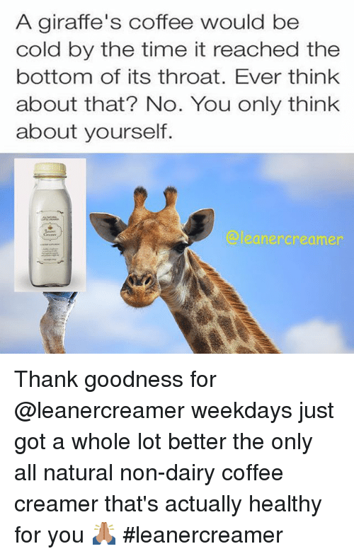 Giraffe meme coffee - photo#1