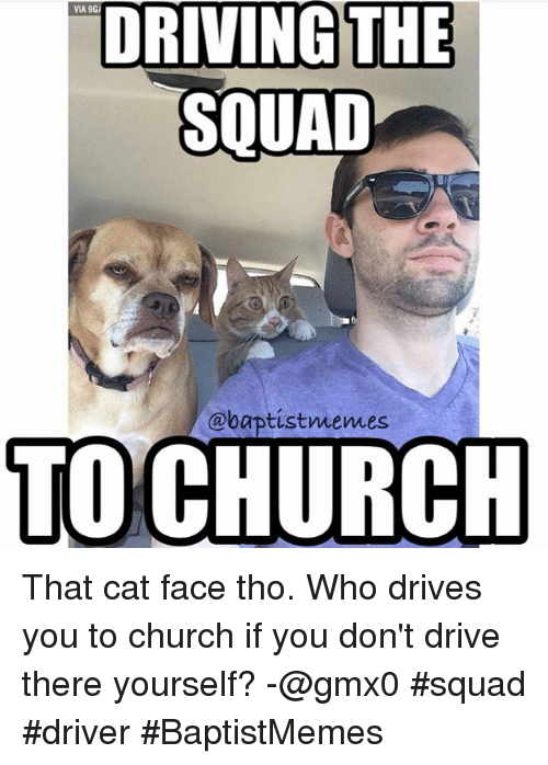 Cats, Church, and Driving: VIA 9GI  DRIVING THE  SOUAD  @baptist memes  TO CHURCH That cat face tho.-Who drives you to church if you don't drive there yourself?-@gmx0-squad driver-BaptistMemes