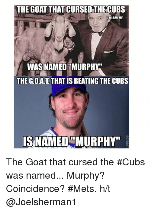 "Mlb, Goat, and Beats: THE GOAT THATCURSED THE CUBS  EME  WAS NAMED MURPHY  THE G.O.AT THAT IS BEATING THE CUBS  IS NAMED MURPHY"" The Goat that cursed the ‪‎Cubs‬ was named... Murphy?Coincidence?-‪‎Mets‬. h-t @Joelsherman1"