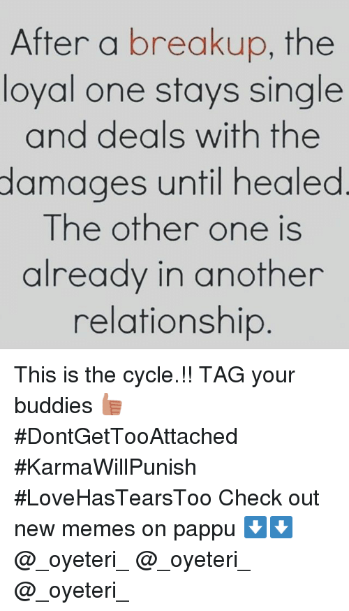 Meme, Memes, and Relationships: After a breakup, the  loyal one stays single  and deals with the  damages until healed  The other one is  already in another  relationship This is the cycle.!!-TAG your buddies 👍🏻-DontGetTooAttached KarmaWillPunish-LoveHasTearsToo-Check out new memes on pappu-⬇️⬇️-@_oyeteri_-@_oyeteri_-@_oyeteri_