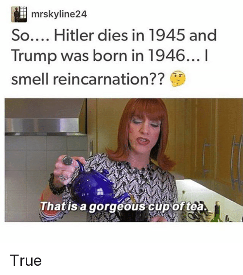 Hitler Quotes On Youth: Search Trump And Hitler Memes On Me.me