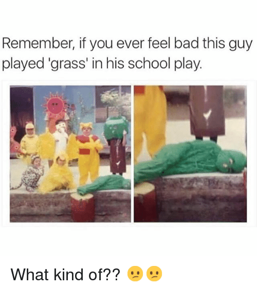Bad, Funny, and School: Remember, if you ever feel bad this guy  played grass' in his school play. What kind of?? 😕😕