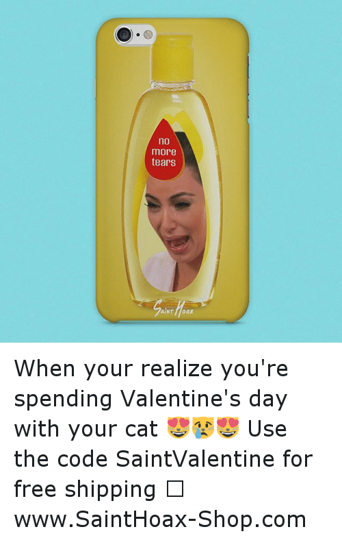if you're spending valentine day alone meme - Funny Cats Memes of 2016 on SIZZLE