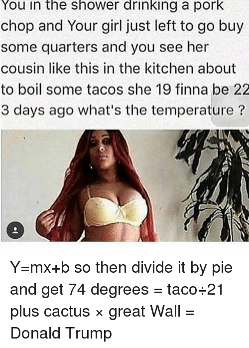 Donald Trump, Drinking, and Funny: You in the ShoWer drinking a pork  chop and Your girl just left to go buy  some quarters and you see her  cousin like this in the kitchen about  to boil some tacos she 19 finna be 22  3 days ago what's the temperature Y=mx+b so then divide it by pie and get 74 degrees = taco÷21 plus cactus × great Wall = Donald Trump