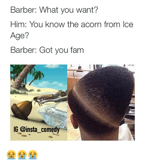 Barber, Fam, and Funny: Barber: What you want?  Him: You know the acorn from Ice  Age?  Barber: Got you fam  IG @insta comedy 😭😭😭
