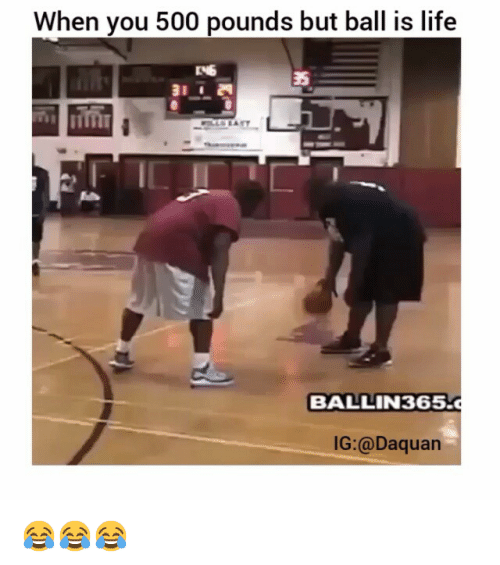 ball is life: When you 500 pounds but ball is life  BALLIN 365.c  IG:@Daquan 😂😂😂