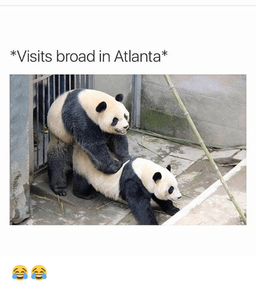 Funny, Atlanta, and Broad: *Visits broad in Atlanta 😂😂
