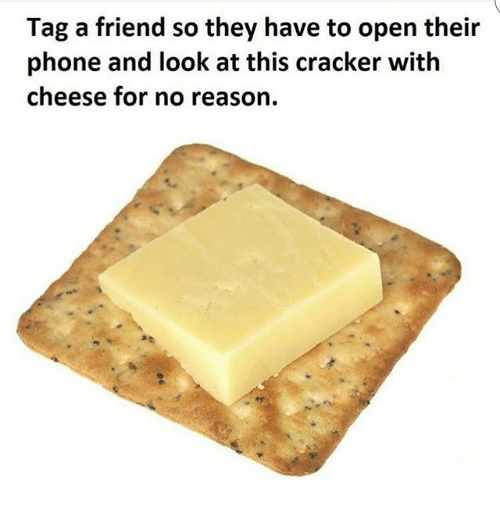 Friends, Phone, and Tagged: Tag a friend so they have to open their  phone and look at this cracker with  cheese for no reason.