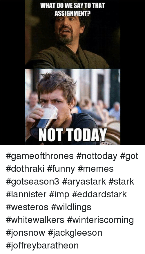 Funny, Game of Thrones, and Meme: WHAT DO WE SAY TO THAT  ASSIGNMENT?  NOT TODAY gameofthrones nottoday got dothraki funny memes gotseason3 aryastark stark lannister imp eddardstark westeros wildlings whitewalkers winteriscoming jonsnow jackgleeson joffreybaratheon
