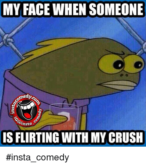 Funny Memes For Insta : My face when someone ansta is flirting with crush insta