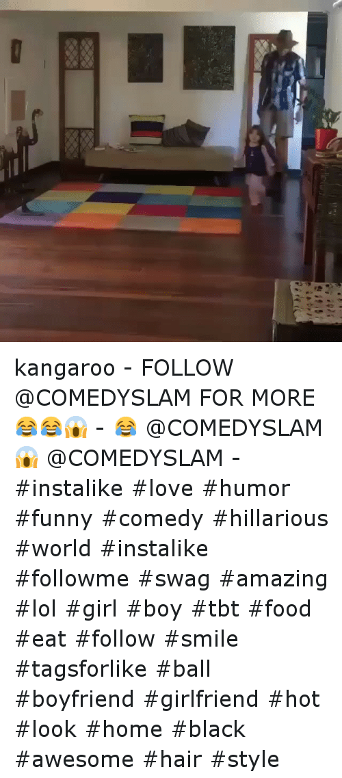 Food, Funny, and Girls: 藷倡。 ◆ kangaroo--FOLLOW @COMEDYSLAM FOR MORE 😂😂😱--😂 @COMEDYSLAM-😱 @COMEDYSLAM--instalike love humor funny comedy  hillarious world instalike followme swag amazing  lol girl boy tbt food  eat follow smile tagsforlike ball -boyfriend girlfriend hot look home black  awesome hair style