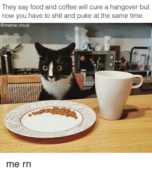 Food, Funny, and Meme: They say food and coffee will cure a hangover but  now you have to shit and puke at the same time  @meme cloud me rn