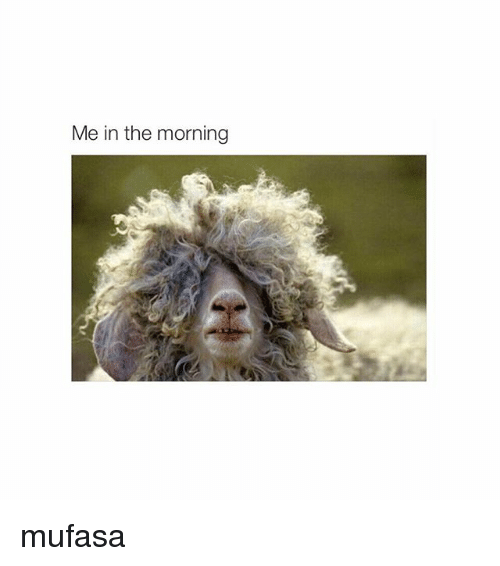 Mufasa and Girl Memes: Me in the morning mufasa