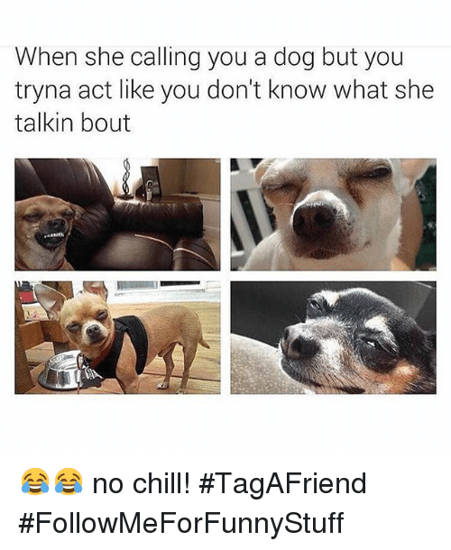 Funny: When she calling you a dog but you  tryna act like you don't know what she  talkin bout 😂😂 no chill! -TagAFriend-FollowMeForFunnyStuff