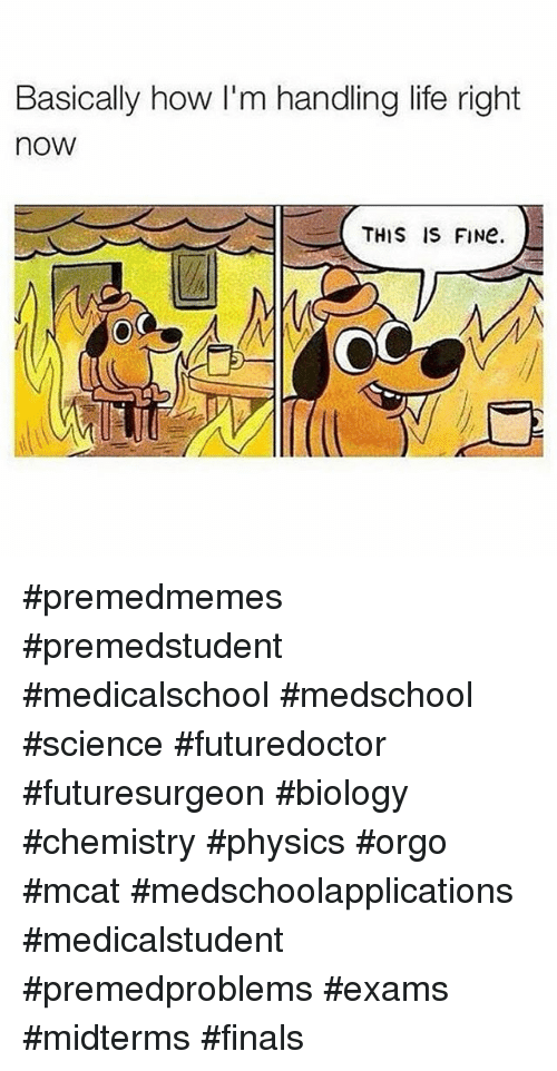 How do I Find the right school for premed?