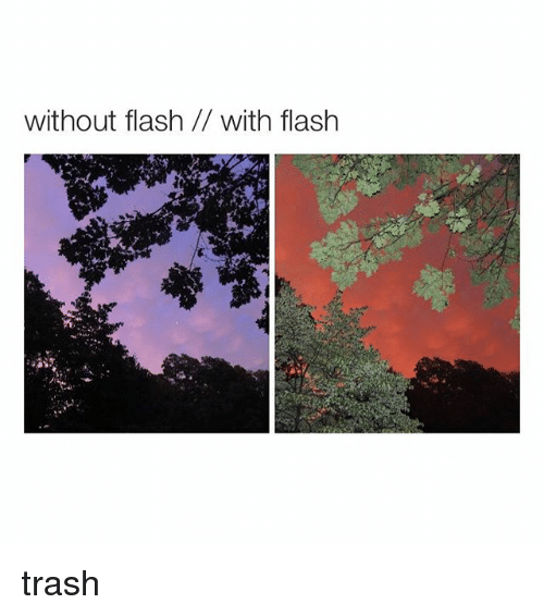 Trash, Girl Memes, and Flash: without flash with flash trash
