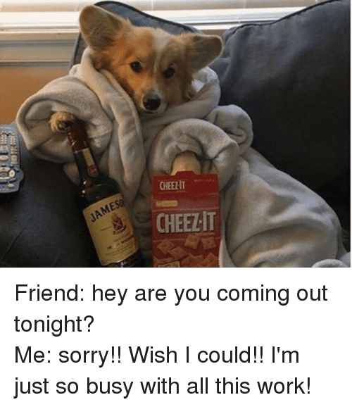 Girl Memes: CHEEHT  CHEEZIT Friend: hey are you coming out tonight? -Me: sorry!! Wish I could!! I'm just so busy with all this work!