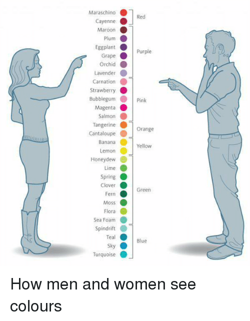 Twitter-How-men-and-women-see-colours-0119ca.png