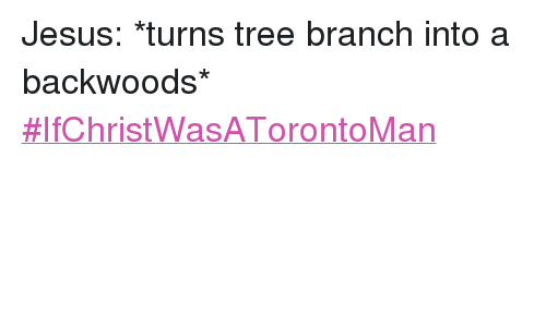 Jesus, Toronto, and Tree: Jesus: *turns tree branch into a backwoods* Jesus: *turns tree branch into a backwoods* -IfChristWasATorontoMan