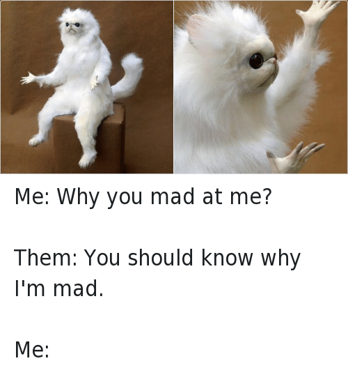 Funny, Mad, and Ims: Me: Why you mad at me? -Them: You should know why I'm mad. -Me: