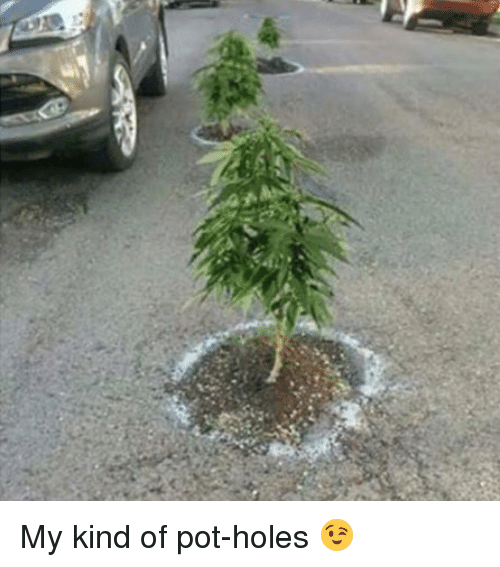 how to fix holes from weed