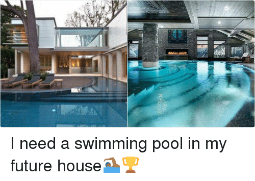 I Need A Pool Design Decoration