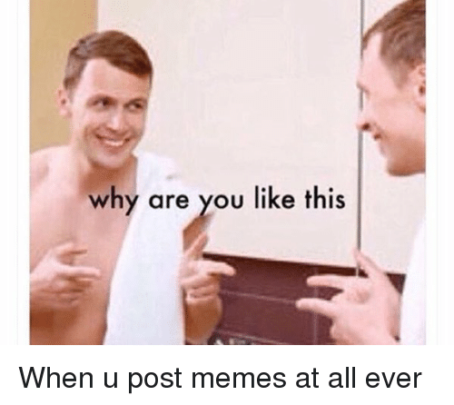 Funny, Meme, and Memes: why are you like this When u post memes at all ever