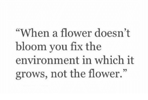 """Girl Memes: """"When a flower doesn't  bloom you fix the  environment in which it  grows, not the flower."""""""