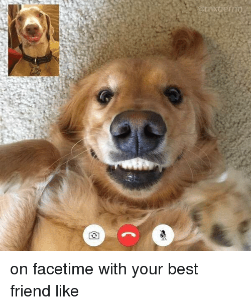 Best Friend, Facetime, and Friends: @mxden on facetime with your best friend like