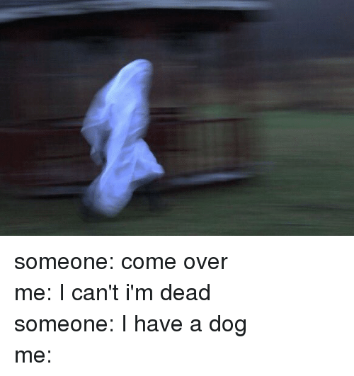 Dogs: someone: come over-me: I can't i'm dead-someone: I have a dog-me: