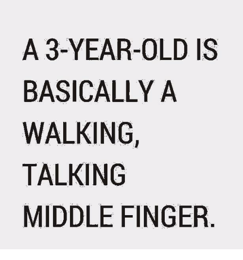 Memes, 🤖, and Middle Finger: A 3-YEAR-OLD IS  BASICALLY A  WALKING  TALKING  MIDDLE FINGER