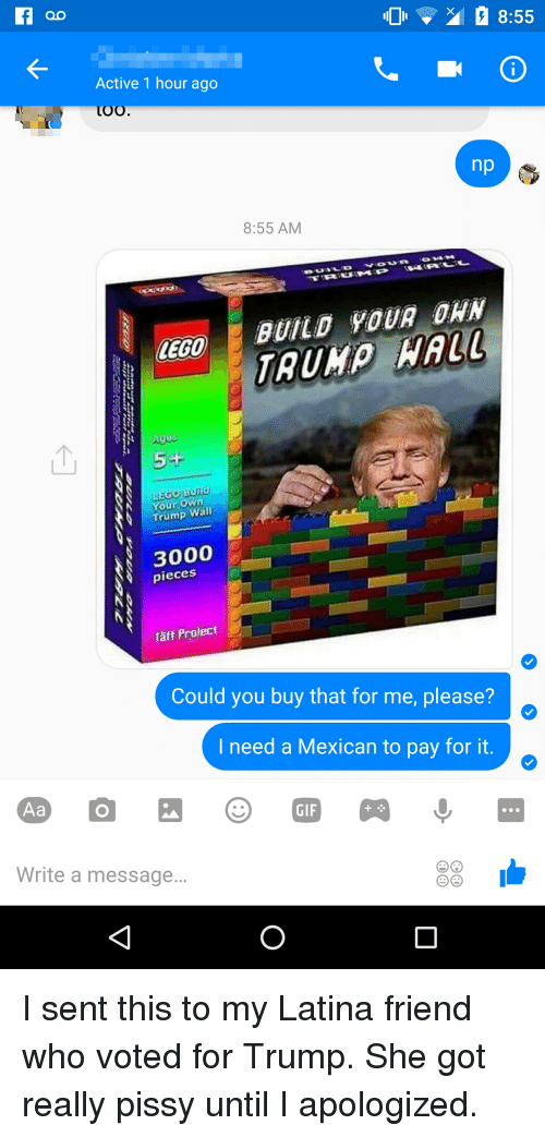 Lego Age: a 8:55  Active 1 hour ago  LOO  8:55 AM  BUILD YOUR ORN  WALL  LEGO  Ages  5-  Build  Your Own  Trump Wall  3000  pieces  Taff Project  Could you buy that for me, please?  I need a Mexican to pay for it  Aa  GIF  Write a message... I sent this to my Latina friend who voted for Trump. She got really pissy until I apologized.