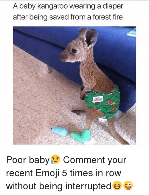 Emoji, Fire, and Memes: A baby kangaroo wearing a diaper  after being saved from a forest fire Poor baby😥 Comment your recent Emoji 5 times in row without being interrupted😆😜