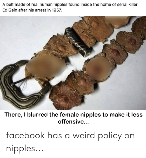 ed gein: A belt made of real human nipples found inside the home of serial killer  Ed Gein after his arrest in 1957  There, I blurred the female nipples to make it less  offensive... facebook has a weird policy on nipples...
