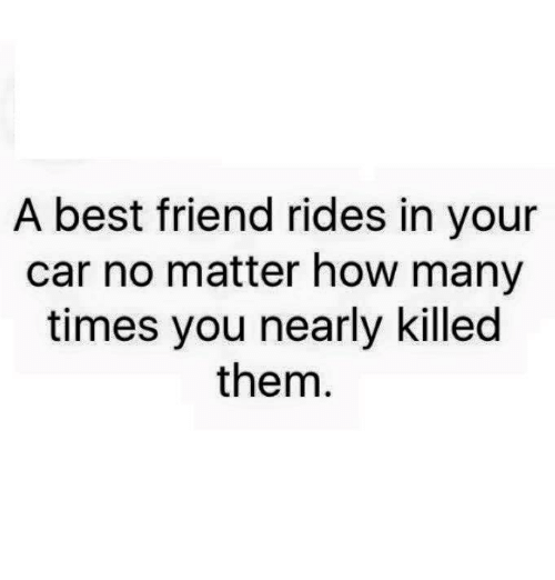 Best Friend, How Many Times, and Memes: A best friend rides in your  car no matter how many  times you nearly killed  them