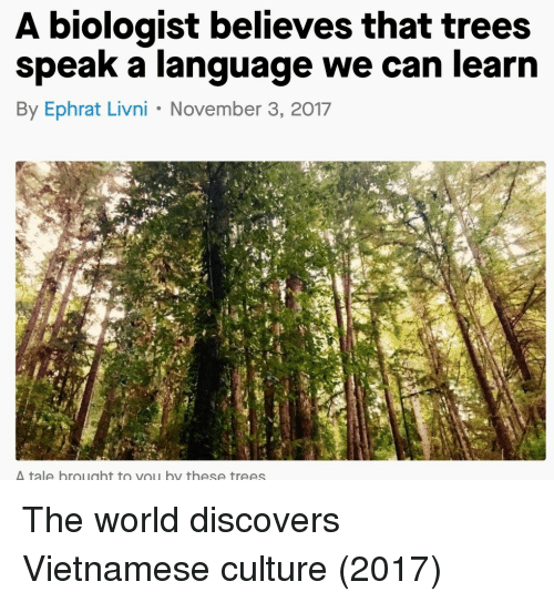Vietnamese: A biologist believes that trees  speak a language we can learn  By Ephrat Livni November 3, 2017  tale brought to vou by these trees The world discovers Vietnamese culture (2017)
