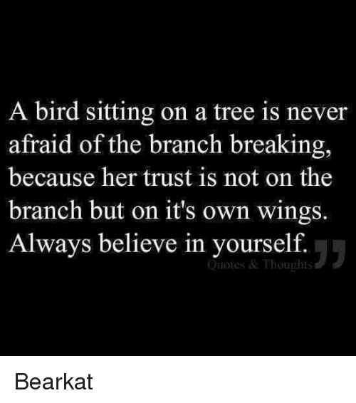 Memes, Quotes, and Tree: A bird sitting on a tree is never  afraid of the branch breaking,  because her trust is not on the  branch but on it's own wings.  Always believe in yourself.  Quotes & Thoughts Bearkat