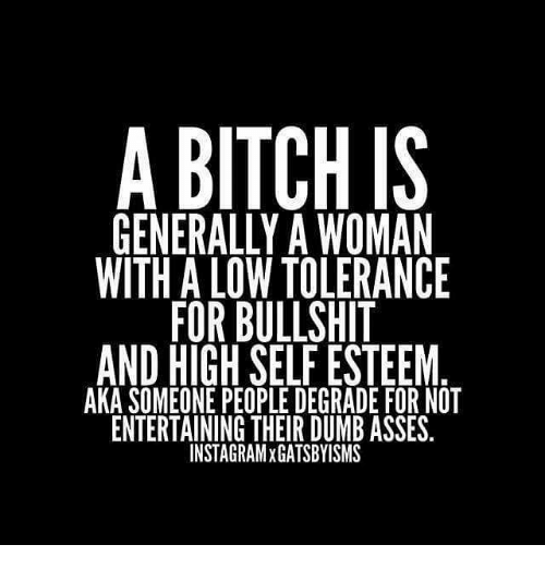 Bitch, Dumb, and Memes: A BITCH IS  GENERALLY A WOMAN  WITH A LOW TOLERANCE  FOR BULLSHIT  AND HIGH SELF ESTEEM  AKA SOMEONE PEOPLE DEGRADE FOR NOT  ENTERTAINING THEIR DUMB ASSES.  INSTAGRAMxGATSBYISMS