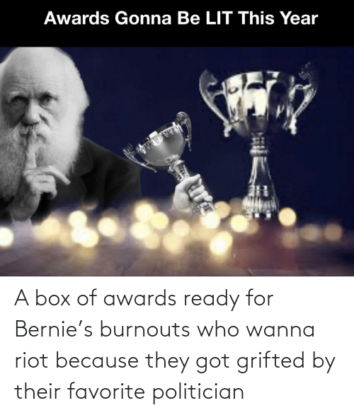 politician: A box of awards ready for Bernie's burnouts who wanna riot because they got grifted by their favorite politician