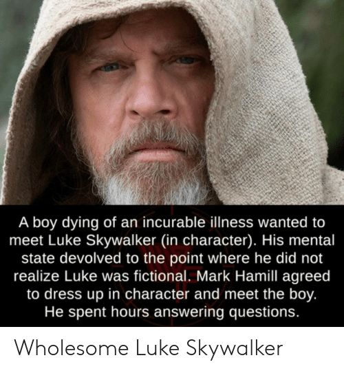 answering: A boy dying of an incurable illness wanted to  meet Luke Skywalker (in character). His mental  state devolved to the point where he did not  realize Luke was fictional. Mark Hamill agreed  to dress up in character and meet the boy.  He spent hours answering questions. Wholesome Luke Skywalker