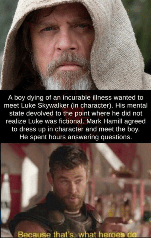 answering: A boy dying of an incurable llness wanted to  meet Luke Skywalker (in character). His mental  state devolved to the point where he did not  realize Luke was fictional. Mark Hamill agreed  to dress up in character and meet the boy.  He spent hours answering questions.  Because that's. what heroes do