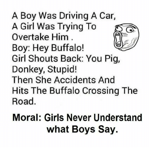 Pigly: A Boy Was Driving A Car,  A Girl Was Trying To  Overtake Him  Boy: Hey Buffalo!  Girl Shouts Back: You Pig,  Donkey, Stupid!  Then She Accidents And  Hits The Buffalo Crossing The  Road  Moral: Girls Never Understand  what Boys Say.