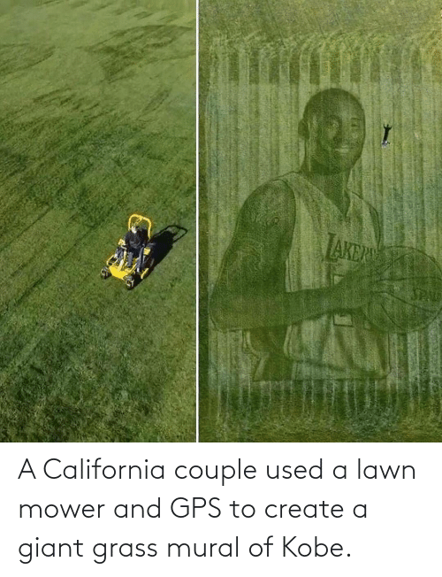 create a: A California couple used a lawn mower and GPS to create a giant grass mural of Kobe.