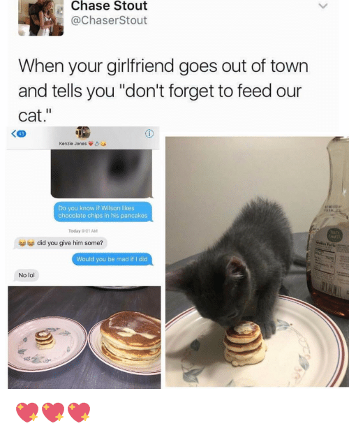Your cat dating