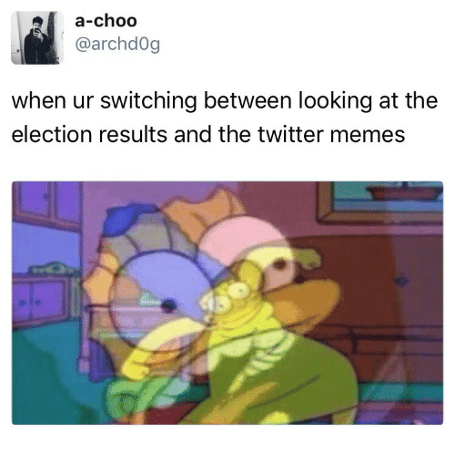 Twitter Memes: a-choo  @archd0g  when ur switching between looking at the  election results and the twitter memes